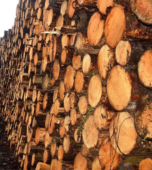 timber-3415637_960_720